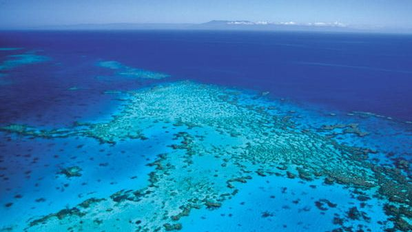Hardy Reef off of Queensland Coast - Great Barrier Reef